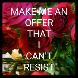 Other - MAKE ME AN OFFER THAT I CAN'T RESIST